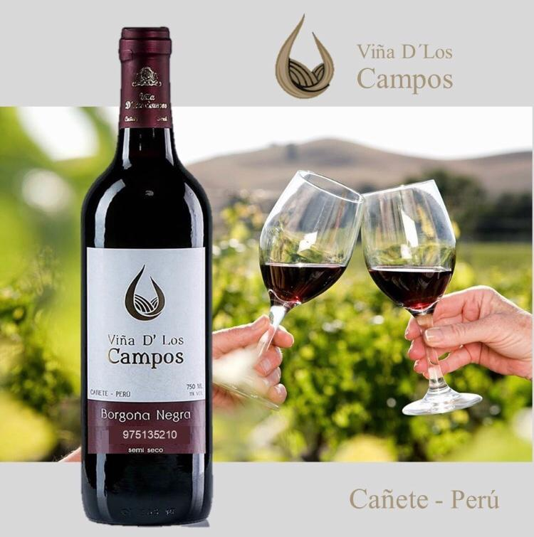 Venta de vinos en lima por mayor